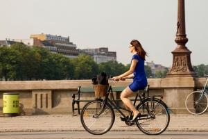 The Third Great Awakeing (www.copenhagencyclechic.com)